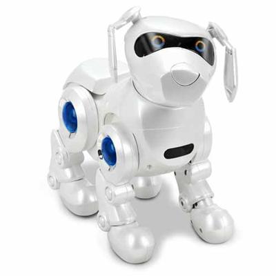 Pin teksta robot dog on pinterest