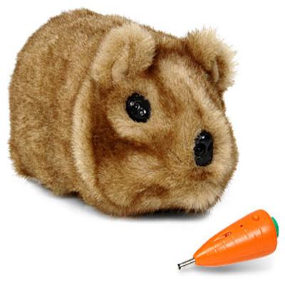 robot-guinea-pig