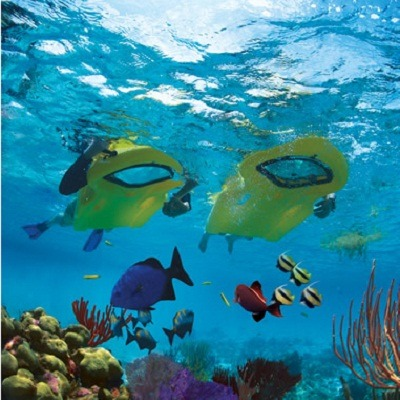 The Snorkeling Kickboard 2