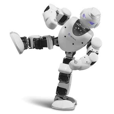 the-robotic-entertainer-1