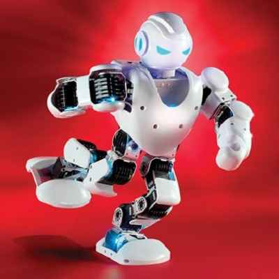 The Robotic Entertainer