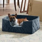 The Portable Pet Bed - A pet bed that folds into a compact carrying case for convenient portability