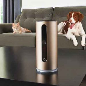 The Pet Nanny Cam - allows pet owner to monitor and interact with their favorite pet from anywhere in the world