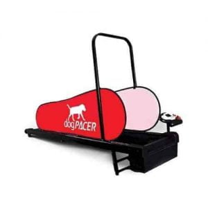 dogPACER Minipacer Treadmill - The perfect Dog Treadmill for home exercise