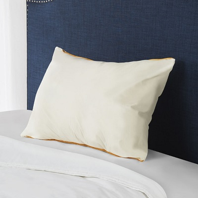 Odor Resistant Pillow