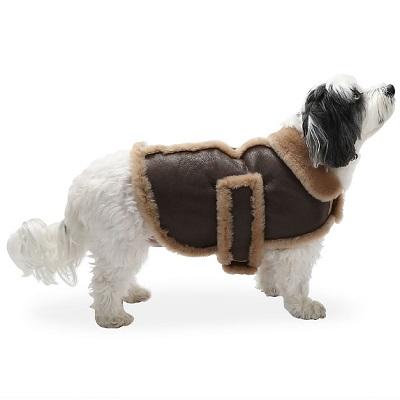 Dog's Leather Shearling Bomber Jacket 1