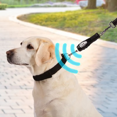 Dog Ultrasonic Walking Trainer