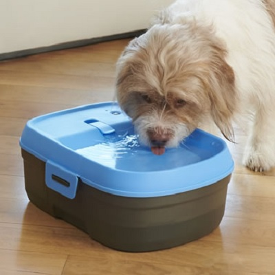 Pet's-Cordless-Filtered-Water-Fountain