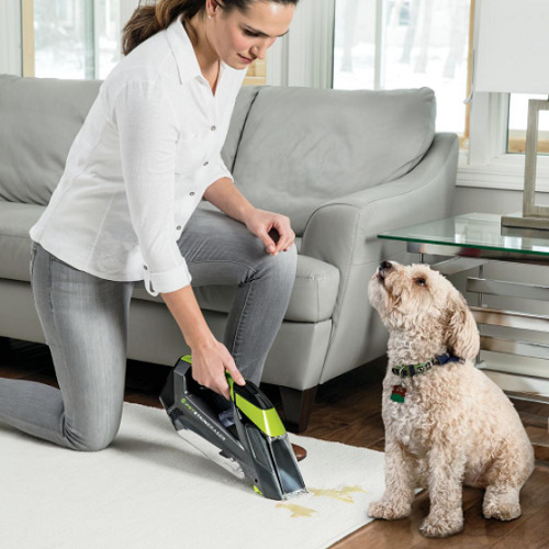 Cordless Carpet Stain Remover